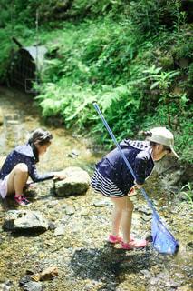 川で虫取りの写真・画像素材[3635603]