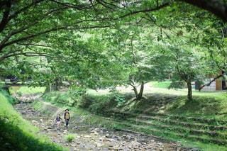 母娘2人川遊びの写真・画像素材[3635602]