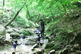 母親で川遊びの写真・画像素材[3635605]