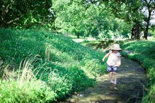 川遊びの写真・画像素材[3635616]