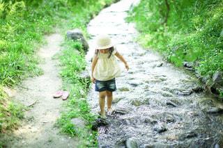 川遊びの写真・画像素材[3635615]