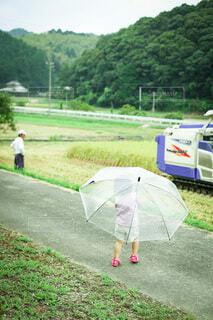 稲刈りを傘さして見物の写真・画像素材[3670421]