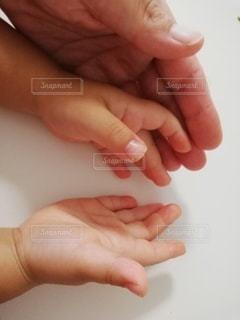 親子の手の写真・画像素材[3606197]