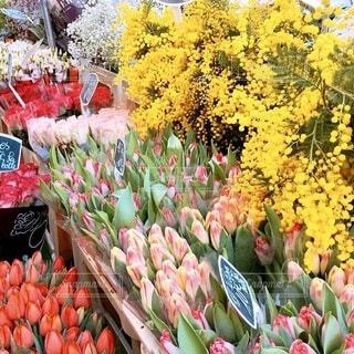 マルシェの花束の写真・画像素材[4171928]