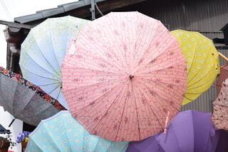 雨の京都の写真・画像素材[3669015]