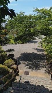 風景,空,屋外,家,樹木,草木