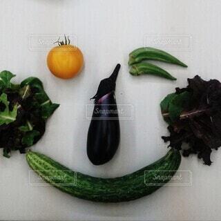 食べ物,トマト,野菜,笑顔,食品,オクラ,食材,フレッシュ,ベジタブル,きゅうり,ナス,ベビーリーフ