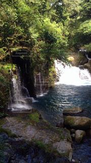 絶景,水,旅行,熊本,せせらぎ,菊池渓谷,菊池渓谷のせせらぎ