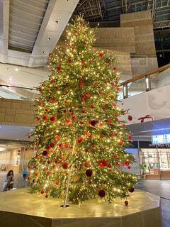 きらびやかなクリスマスツリーの写真・画像素材[3984405]