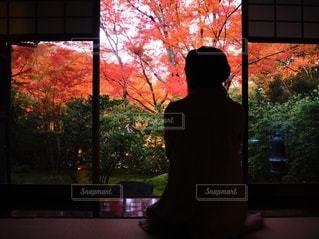 紅葉と女性の写真・画像素材[3643060]