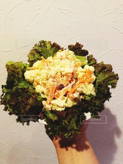 食べ物,野菜,食品,食材,マニア,フレッシュ,ベジタブル,インスタ,youtube,ブログ