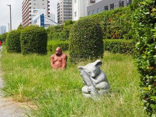 草の中に座っている動物の写真・画像素材[3746274]