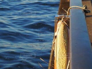 川岸に浮き輪の写真・画像素材[3828144]