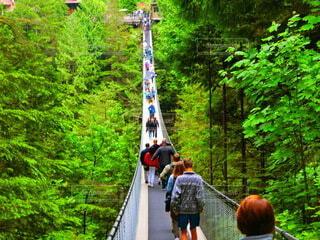 長い吊り橋の写真・画像素材[3658588]