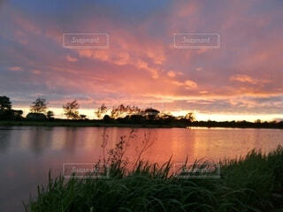 夕陽の写真・画像素材[3642911]