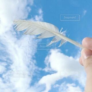 空,屋外,雲,青,青い空,手持ち,人物,人,羽,ポートレート,ライフスタイル,手元,クラウド