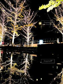 夜,夜景,道路,イルミネーション,クリスマス,梅田,グランフロント大阪,街路灯,シャンパンゴールド,グランフロントクリスマス