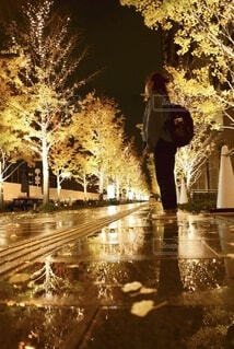 夜景,道路,イルミネーション,クリスマス,梅田,切ない,いちょう,グランフロント大阪,街路灯,シャンパンゴールド,グランフロントクリスマス
