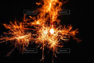 閃光花火の写真・画像素材[3651690]