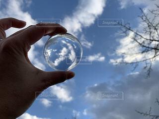 空,木,屋外,雲,青い空,手持ち,ポートレート,手元,レンズボール