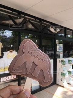 動物,手持ち,人物,アイス,アイスクリーム,ポートレート,チョコ,ゴリラ,ライフスタイル,手元,チョコアイス