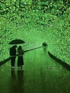 光のトンネルの写真・画像素材[3672241]