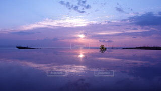 風景,海,花,朝日,綺麗,幻想的,船,水面,海岸,反射,夜明け,癒し,正月,お正月,リフレクション,日の出,新年,初日の出,綺麗な空