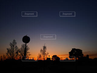 公園に沈む夕陽の写真・画像素材[4300693]