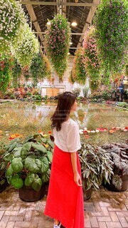 花園での写真・画像素材[3700487]
