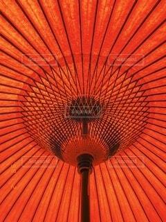 傘の写真・画像素材[3685146]