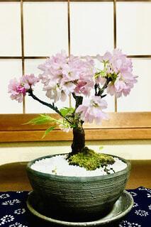 テーブルの上に紫色の花で満たされた花瓶の写真・画像素材[4256151]