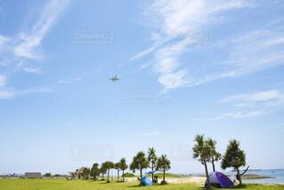 公園で日光浴する人たちと通りすぎる飛行機の写真・画像素材[3809806]