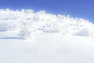 雪山の景色の写真・画像素材[4137376]