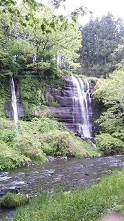 森林,川,滝,手持ち,人物,ポートレート,ライフスタイル,手元