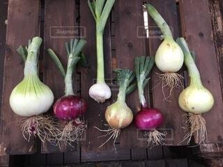食べ物,野菜,食品,新鮮,食材,採れたて,フレッシュ,ベジタブル,にんにく,タマネギ