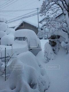 雪に覆われた斜面の写真・画像素材[3678025]