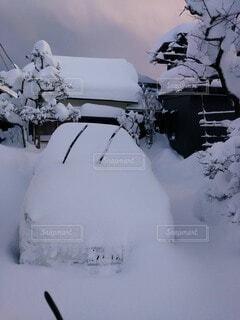 雪に覆われた斜面の写真・画像素材[3678024]