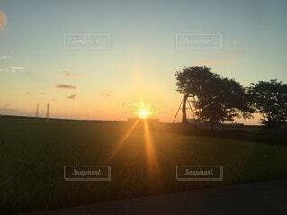 自然,風景,空,太陽,朝日,雲,夕暮れ,日光,田舎,草,樹木,正月,朝,お正月,日の出,新年,初日の出,草木,日中,決定的瞬間,インスタ映え