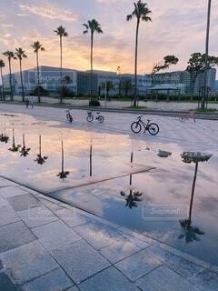 夕日の写真・画像素材[3696283]