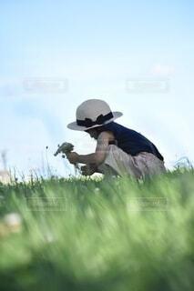お花摘みの写真・画像素材[3691456]