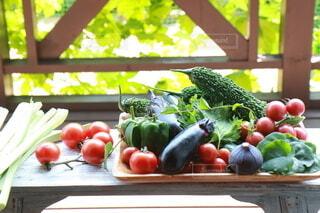 食べ物,野菜,食品,新鮮,ゴーヤ,イチジク,大葉,プチトマト,食材,夏野菜,フレッシュ,ベジタブル,ナス,ルバーブ,とれたて野菜,オカワカメ
