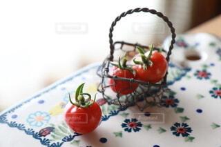 食べ物,赤,トマト,野菜,食品,美味しい,大好き,プチトマト,食材,フレッシュ,ベジタブル,ぷるるん