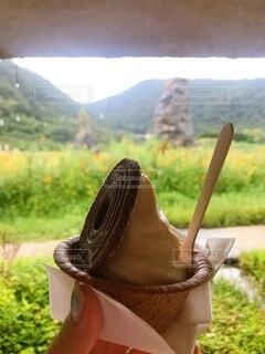 夏,屋外,手,草,手持ち,アイス,クッキー,ソフトクリーム,アイスクリーム,草木