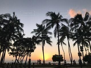 Hawaiiの写真・画像素材[3682151]