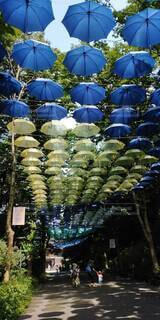 通りで傘を閉じるの写真・画像素材[3709262]