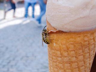 アイスクリームと蜂の写真・画像素材[3750985]