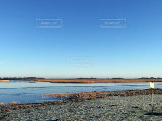 のどかな海の写真・画像素材[3751608]