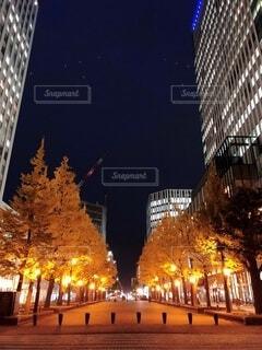紅葉と街灯の写真・画像素材[3757394]