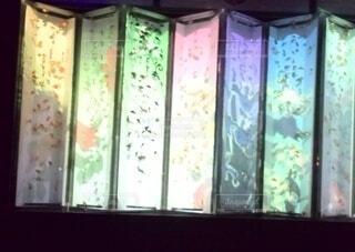 光のアートwith金魚の写真・画像素材[3687971]