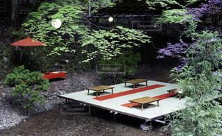 京都貴船の川床料理店の写真・画像素材[693462]